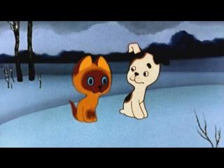 Котёнок по имени Гав - выбирай