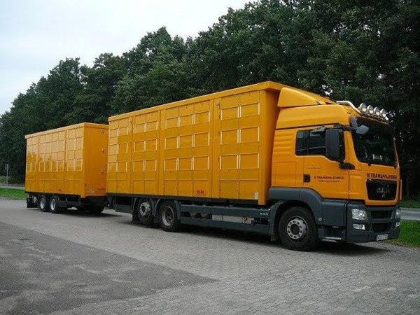 Трудовые будни водителей грузовиков зерновозов