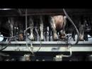 Молочная промышленность за 5 минут by Erin Janus mp4