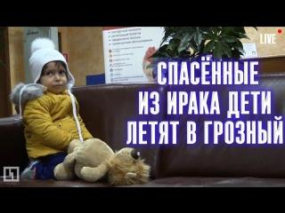 Российских детей вернули из Ирака