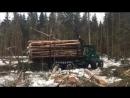 Вывозка зимнего леса