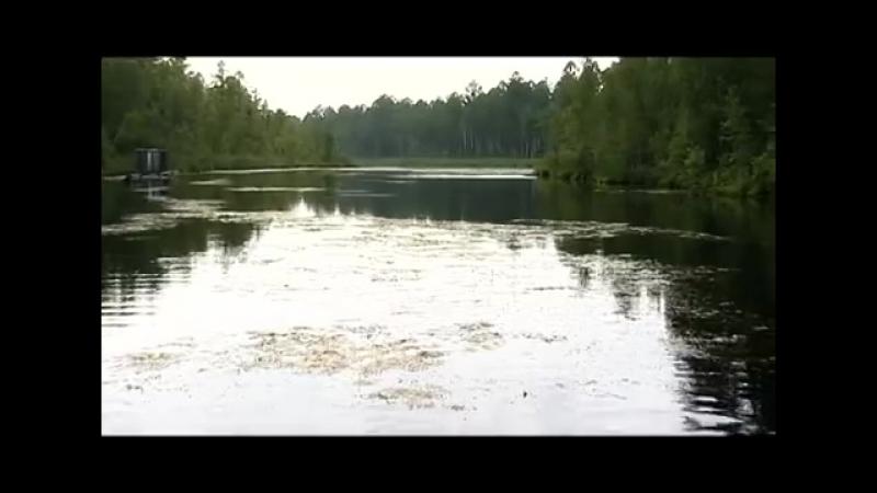 Жизнь у озера Дикого-Край без окраин