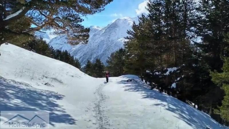 Зимняя экскурсия к водопаду