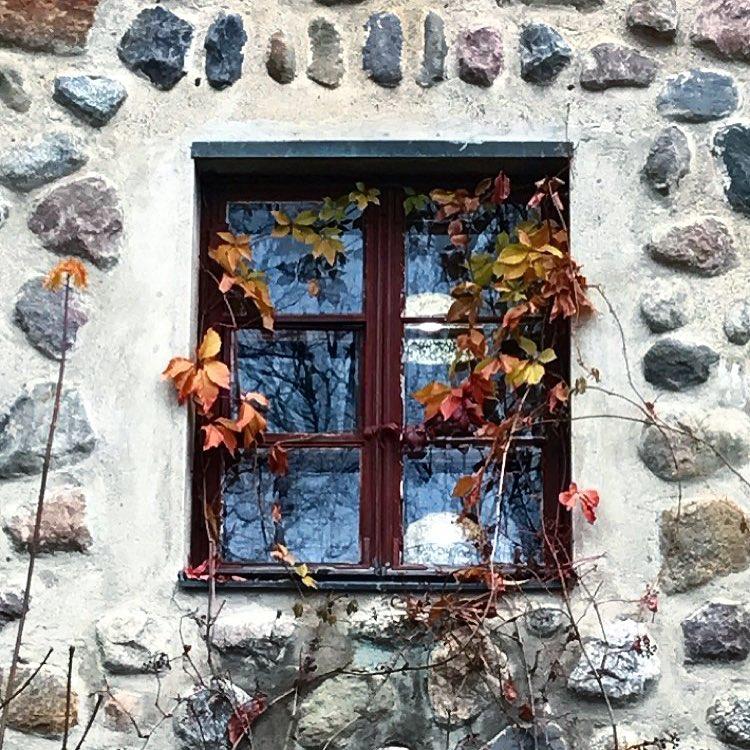 фото из альбома Жени Соколовой №14