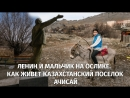 Ленин и мальчик на ослике. Как живет казахстанский поселок Ачисай