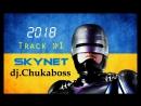 SkyNet Track №1