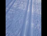 Катаясь на лыжах сегодня по лесной трассе я видела большое количество людей, и лишь двое не дали моим мозгам покоя. Первый-это