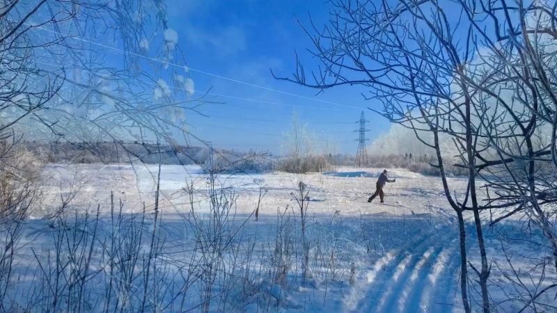 Куржа пала на лыжню :-)