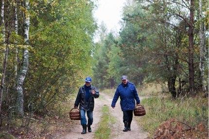В Ленобласти объявлены сроки весенней охоты - Статьи - 47новостей из Ленинградской области
