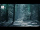 Debussy - Clair de lune - Лунный свет
