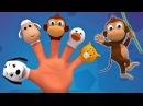 Животные палец семья Дети учатся Песня о животных Finger Family Song Animal Finger Family