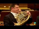 W.A.Mozart Horn Concerto Nr.3 KV.447 III.Rondo Radek Babor