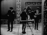 THE GOLDBERG MILLER BLUES BAND (Featuring Steve Miller) - 1965 -