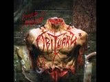 Obituary- Out Of Blood