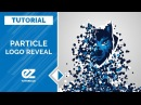 How To Create A Particle Logo Reveal, After Effects Tutorial Template