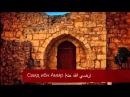 Надир Абу Халид — История Саида ибн Амра