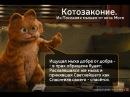 Сборник мультов Про фсякое Кот Мотя