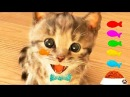 ПРИКЛЮЧЕНИЕ МАЛЕНЬКОГО КОТЕНКА мультфильм про котят мультик для детей и малышей мультики от ММ