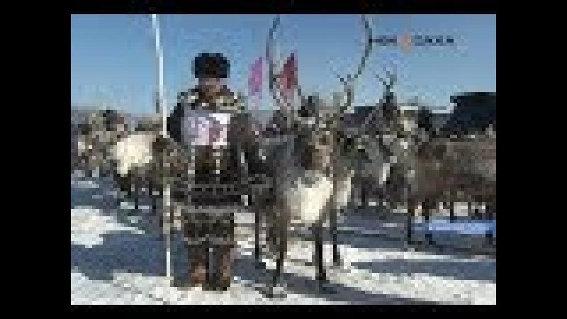 Оленеводов Алданского района поздравили с профессиональным праздником