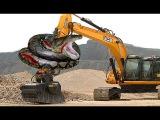 Excavator Catches Giant Anaconda While Digging | Snake Attack Excavator.