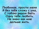 Магомед Дзыбов -  любимая (lyrics)