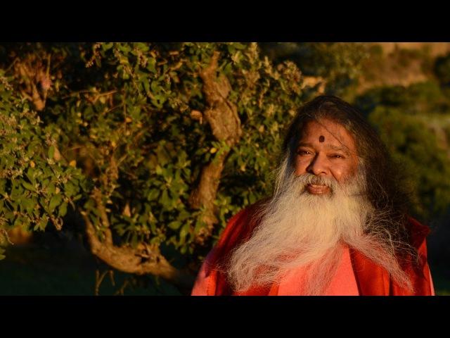 Sri Chakra Puja and 8th Birthday of Puttu Gam