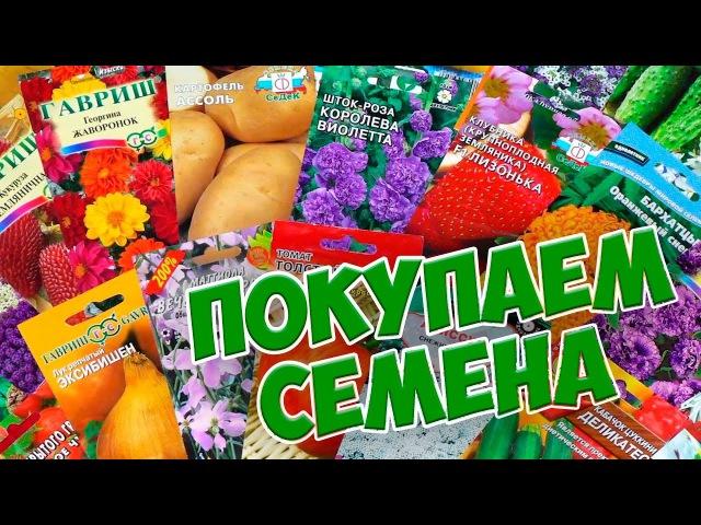 Покупаем семена 🌱 Правила покупки семян в садовом центре 🌱 Советы эксперта hitsadTV
