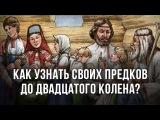 Как узнать своих предков до двадцатого колена? Анатолий Клёсов