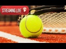 Dominika Cibulkova vs Elena Vesnina SYDNEY 2018 LIVE