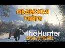 TheHunter Call of the Wild ™ - Медвежья тайга - Medved-Taiga - Новая локация! Обзор