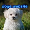 doge.website