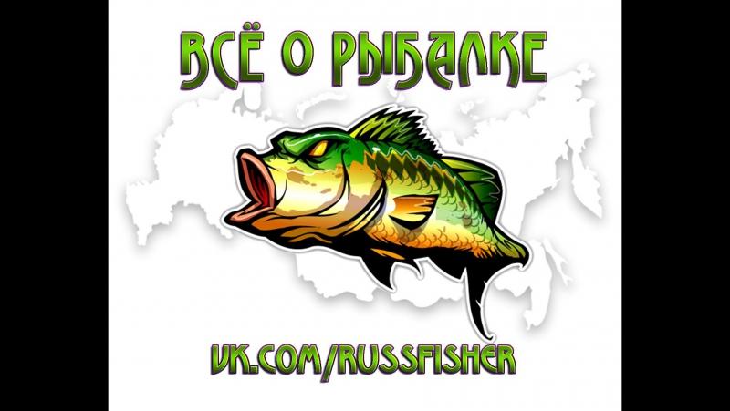 Russfisher. Реакция рыбы на КУКУРУЗУ Подводная съёмка. ЛЕЩ.