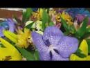 Букет с альстромерией и лилией.