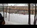 Perm 12 Verletzte nach Messer Attacke in Schule