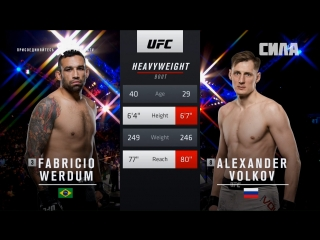 Fight Night London Fabricio Werdum vs Alexander Volkov