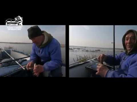 Большой улов. VLOG: Поехали на крупного карася, а нарвались на плотву. Лука. Куршский залив.