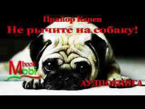 аудиокнига Не рычите на собаку! Прайор Карен слушать аудио книги на русском Психология