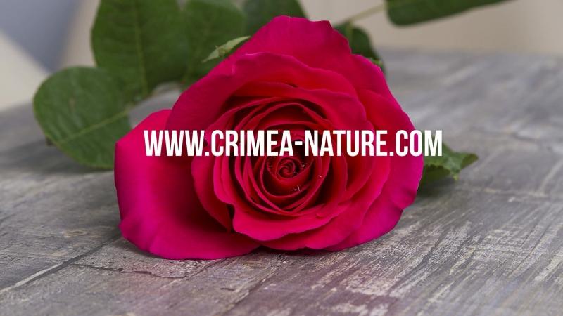 Производитель косметики в Крыму