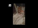 Клип - Подборка видео со вписок 2 __ Голые шкуры