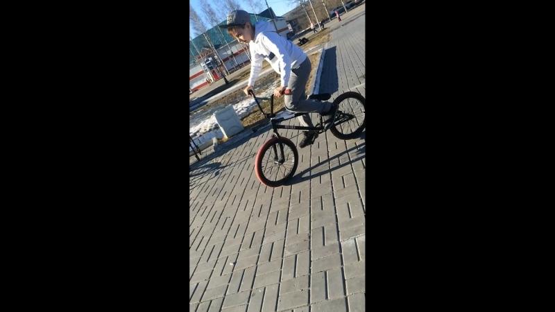 BMX Timofa Kotik Banik