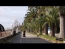 Апсны Абхазия Гагра декабрь _ Apsny Abkhazia Gagra December