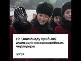 На Олимпиаду прибыла делегация северокорейских чирлидерш