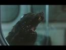 Ratas diabólicas (fieras radiactivas 1982)
