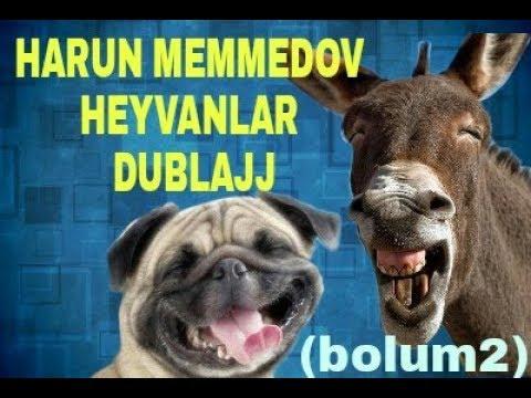 Harun Memmedov HEVANLAR 2018 dublajdari .En Gulmeli heyvanlar (bolum2)