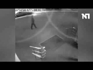Мужчина застрелил мирно сидевшую собаку