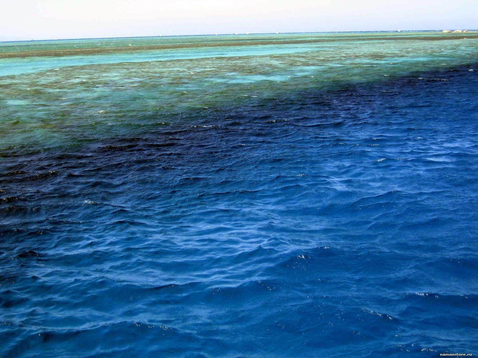 Неизвестное вещество попало в море с винзавода