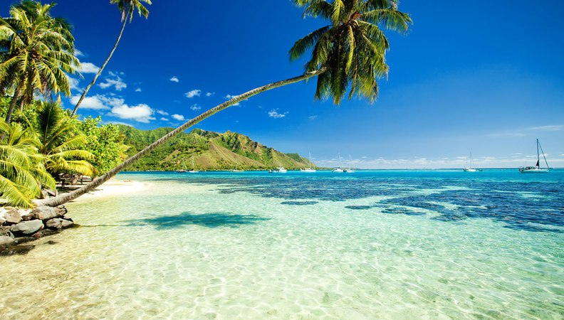 Maui hotels: Traveler's choice Top 10 Best Hotels in Maui Hawaii