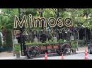 Паттайя 2018 ТЦ Mimosa и Магазин-Музей для Настоящих МУЖИКОВ