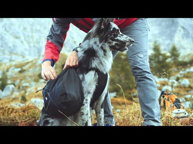 Hurtta - On a mountain trail