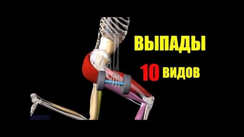 ВЫПАДЫ. 10 ВИДОВ. ОСОБЕННОСТИ РАЗНЫХ ВАРИАЦИЙ. Биомеханика